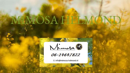 Mimosa's Bloemenatelier